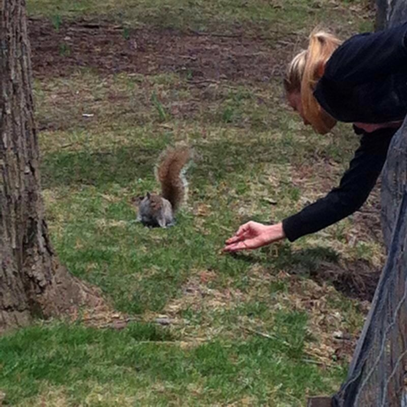 """My new friend in Central Park seems to like my 20gr proteins bar! lol"""